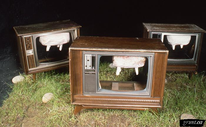 1986 06 24 Sculpture Kempton Dexter Digby County Pasture three televisions with udders installed in gallery on sod